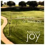 leave joy